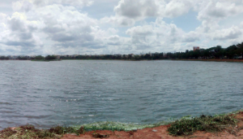 Agara Lake Bangalore