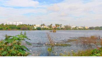 horamavu lake bangalore