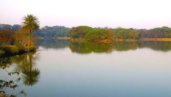 lalbagh lake bangalore