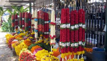 malleswaram market bangalore