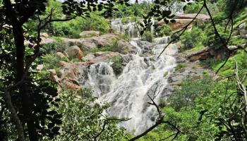 Muthyala Maduvu Anekal Bangalore Karnataka