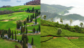 Ooty Coonoor Tour Package from Bangalore